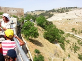 29 - View of Kidron Valley from City of Davi