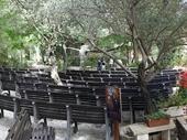 44 - Garden Tomb