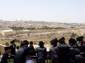 51 - Jerusalem - Orthodox Jews on Mount of Olives