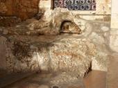 77 - Garden of Gethsemane