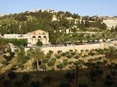 78 - Mount of Olives