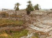 114 - Megiddo