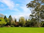 90 - Hamilton Gardens