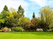91 - Hamilton Gardens