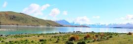 35 - Lake Tekapo