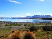 43 - Lake Tekapo