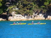 71 - Abel Tasman National Park