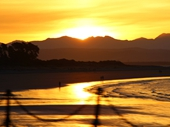 82 - Nelson Sunset