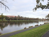 20 - Looking towards AAMI Stadium and Tennis Centre