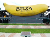 16 - The Big Banana at Coffs Harbour