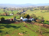 27 - Dairy farm near Bega