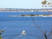 19 - Matilda Bay from King's Park