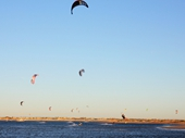 64 - Kite surfers near Rockingham