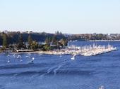 80 - Swan River