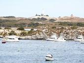 32 - Rottnest Island