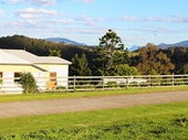 10 -View on Road to Beechmont from Canungra