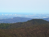 25 - Burleigh and Coolangatta from Mount Tamborine