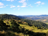 35 - Numinbah Valley from Beechmont