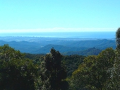 65 - View of Gold Coast from Springbrook