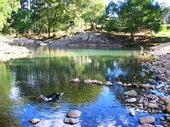 72 - Currumbin Rock Pool 1