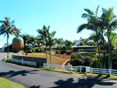 74 - The Big Pineapple and Sunshine Plantation