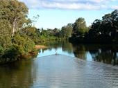 92 - Nerang River