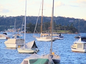 27 - Boats on Harbour at Rose Bay