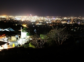 140 - Brisbane from Mount Coot-tha lookout at night