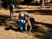 198 - Befriending a Kangaroo at Lone Pine