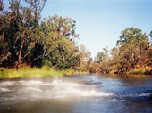 208 - Upper Reaches of the Brisbane River