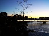 227 - Brisbane River from Kangaroo Point at sunset